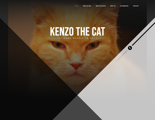 Kunde: Kenzo the Cat (Ehrenamt)