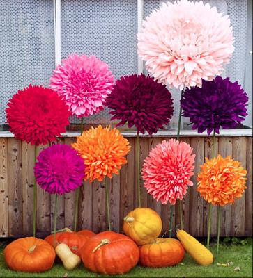 Der Herbst in seinen schönsten Farben