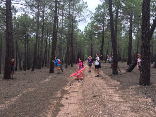 En Camino Abierto uno de los días esta dedicado al grupo. Cada grupo hace la etapa a su manera... reflexión e interiorización, revisión y evaluación del grupo. Camina cada grupo separado de los otros grupos.