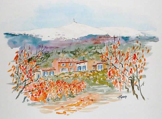 Malreise Provence