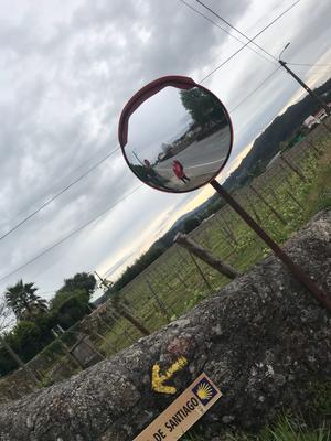 Typisches Spiegelfoto
