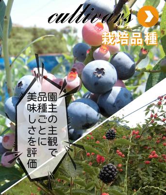 ブルーベリー、ブラックベリー、ラズベリーの栽培品種の紹介