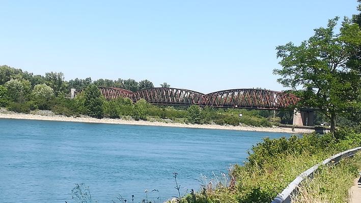 © P. Diziol; Impressionen Wintersdorfer Rheinbrücke vom Ufer aus von meiner Fahrradtour