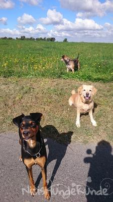 Shira, Jule & Gina