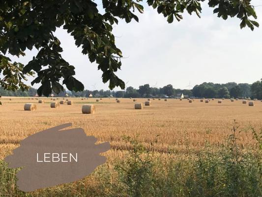 Bild der Prignitz mit Heuballen und Windrädern mit Link zur Unterseite LEBEN