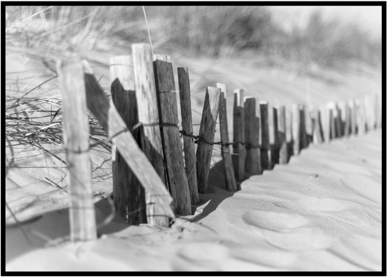 Dune noir et blanc