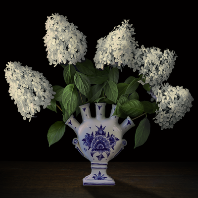 "T.M. Glass, ""Hydrangeas in a Dutch Tulipiere,"" 2020, archival pigment print on hand-made Italian rag paper, Available in: 42 x 42""; 52 x 52""; 58 x 58"", contact for price"
