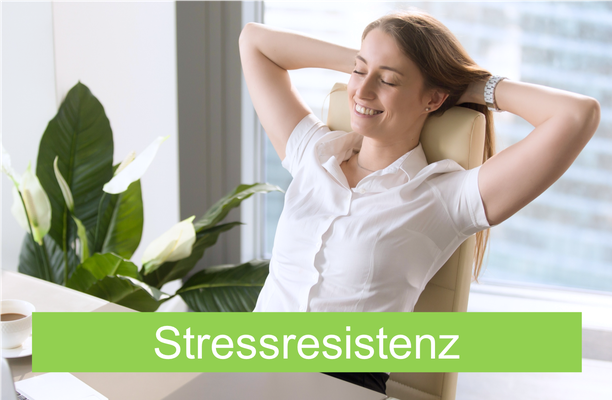 Modernes Mentaltraining für mehr Ruhe, Gelassenheit und Stressresistenz