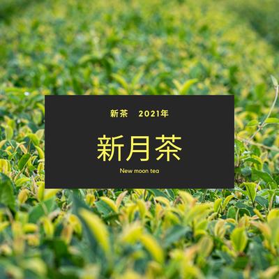 【2021年新茶】有機茶 川根茶 新月茶 (内容量: 100g)