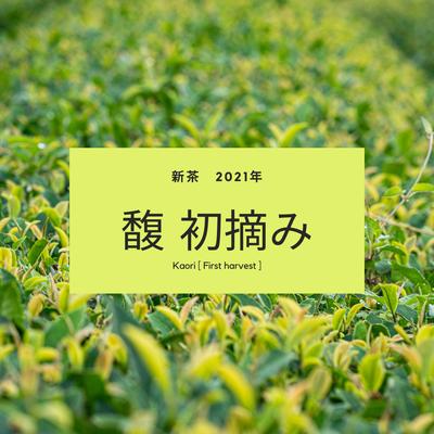 【2021年新茶】有機茶 川根茶 馥 初摘み (内容量: 100g)