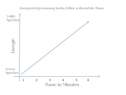 Einfache bildliche Darstellung der Energierückgewinnung am Beispiel des Maximalkrafttrainings