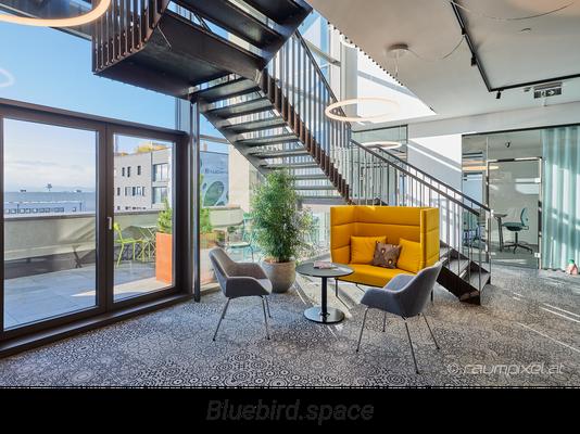 Bluebird.space - New Work in Salzburg Siezenheim / Panzerhalle