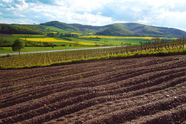 Fundreiche Felder in schöner Landschaft