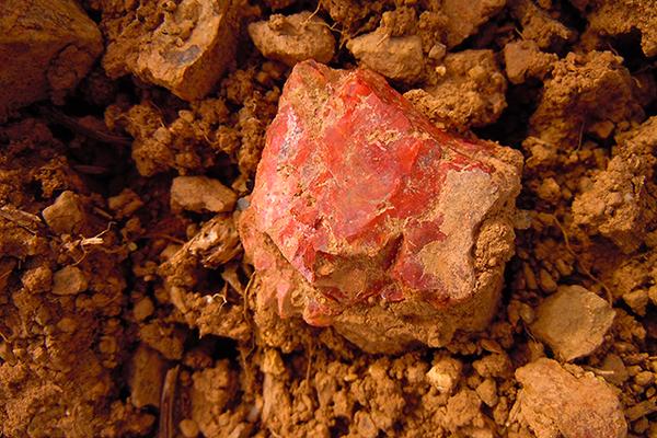 Ein roter Jaspis im Ackerboden.