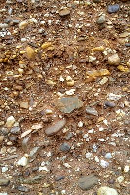 Ein Blick auf die bunt gemischten Steine in einer Schotter-Terrasse