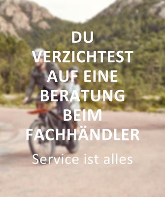 Fehler beim e-Bike Kauf: Du verzichtest auf eine Beratung beim Fachhändler