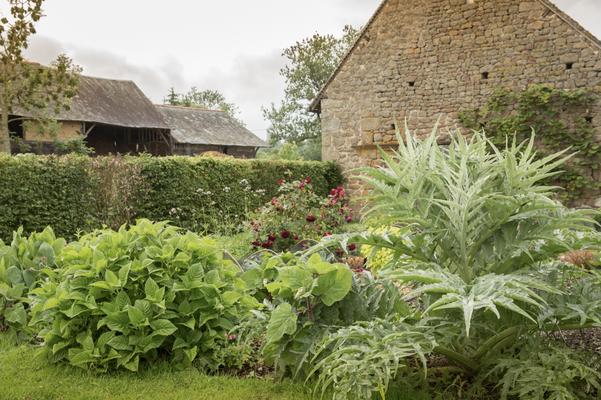 Gartenfotografie von Sibylle Pietrek