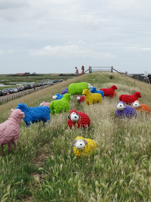 Colorful sheep at the Beach Food Festival © Texelpics 2017