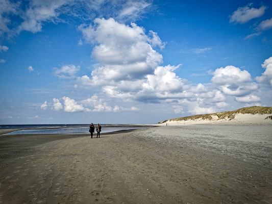 Walking with friends © Texelpics 2019