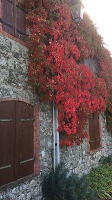 Huisje op de berg Sampzon in de herfst