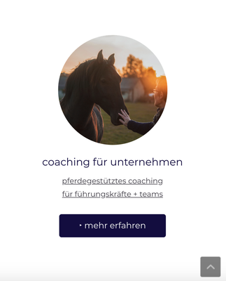 Website Osteopathie Kullmann Ansicht MOBIL