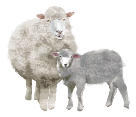 羊 ヒツジ イラスト