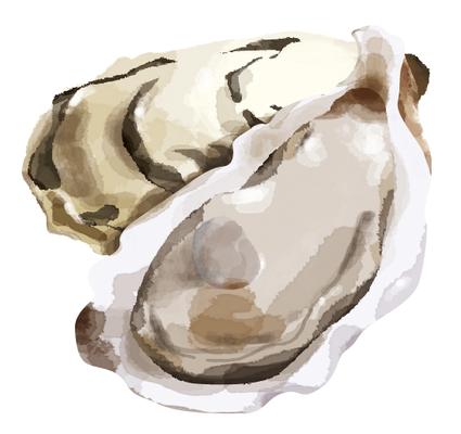 牡蠣 イラスト カキ
