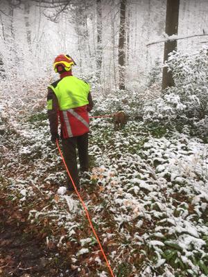 Aprillenwetter: Arbeit im Schnee am Sonntag...