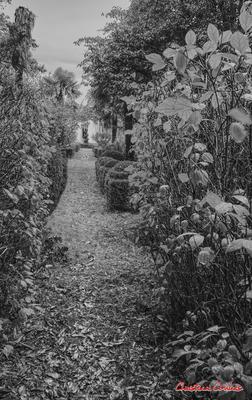(Noir et blanc) Jardin en bordure du chemin de randonnée, depuis le port de Cubzac-les-ponts. Samedi 26 septembre 2020. Photographie HDR © Christian Coulais