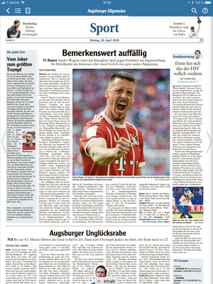 Sandro Wagner, FC Bayern Muenchen