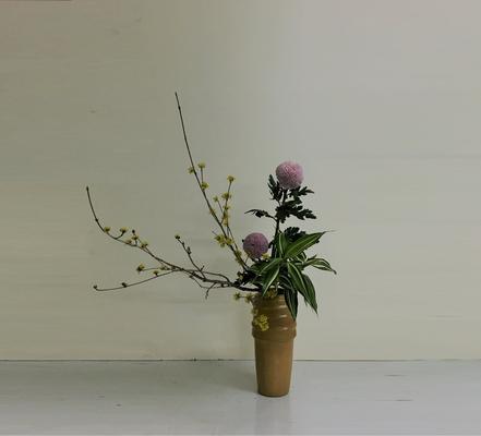 2019.3.13 <山茱萸(サンシュユ) ピンポンマム ドラセナ・サンデリアーナ> Hinaさんの作品です。瓶花傾斜型のお稽古です。ピンポンマムはピンポン菊とかオランダ玉菊などとも呼ばれています。