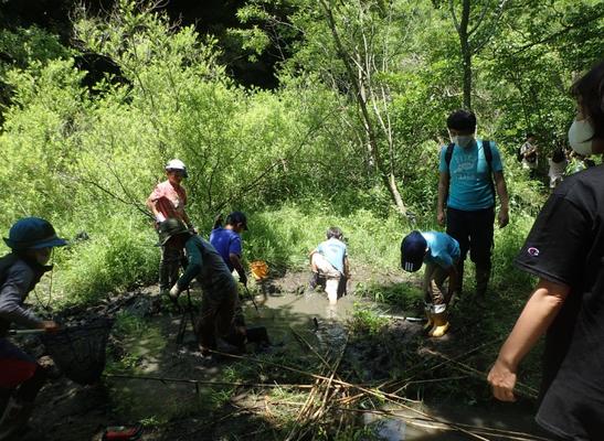 5月30日、生物保全・調査プロジェクト