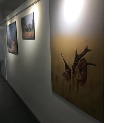 (DR)  CASA Chambres d'hôtes Amiens-Centre d'Accueil et d'animation de Corbie