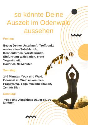 Ablauf von Deinem Wochenende im Odenwald mit Yoga und oder Wald