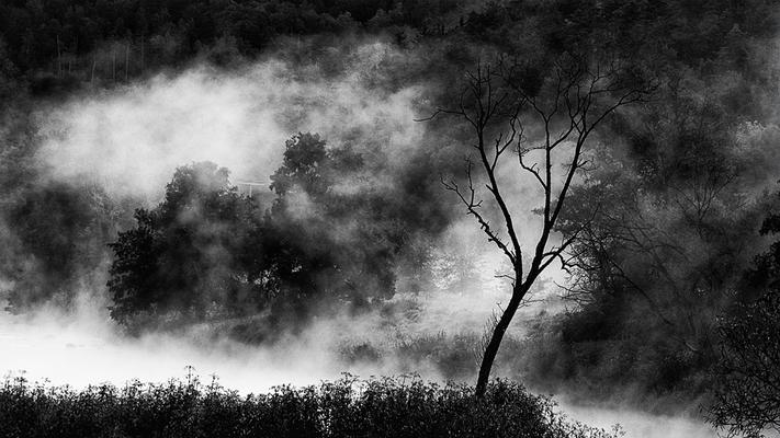 Foto: Harald Portele
