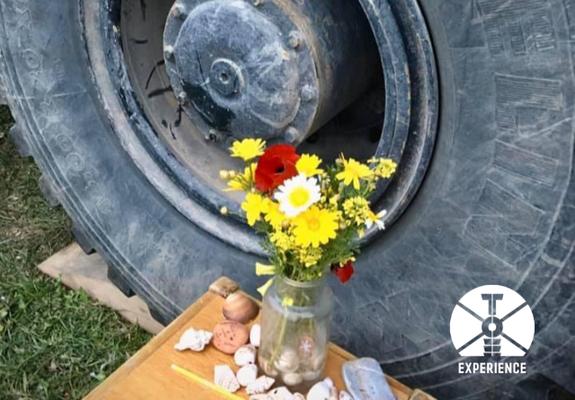 Blumen fürzuverlässige, stabile und wartungsarme Expeditionsmobile (neudeutsch Expedition Vehicle. In Freiheit durch die Welt