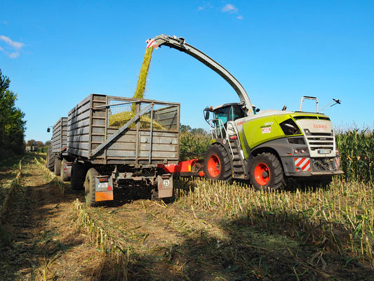 Claas Jaguar 960  mit Kemper 475Plus