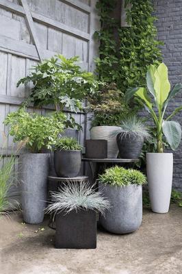 Aménagement de poteries et jardinières © DR