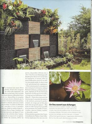 Aménagement d'un jardin zen et d'un mur végétal