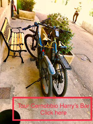 Tour Harry`s Bar