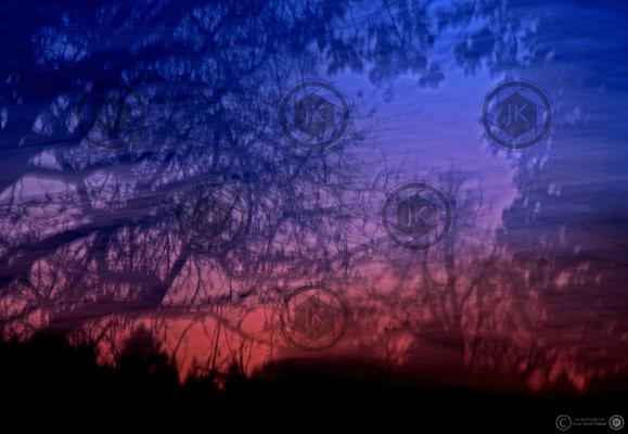 Waldrand bei Nacht 1/10