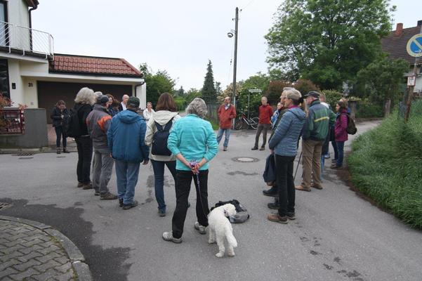 Vogelstimmenspaziergang im April  2019, Startpunkt am Alten Gassenweg/Ecke Frankenweg (BUND Dossenheim)