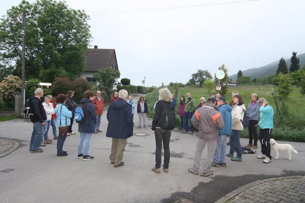 Morgens um 7 Uhr beim Vogelstimmenspaziergang April 2019 (BUND Dossenheim)