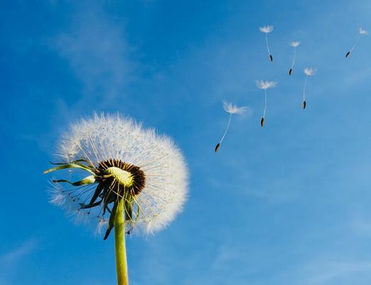 Die Kraft des Unterbewusstseins entdecken und nutzen #tatkraftundlebensenergie