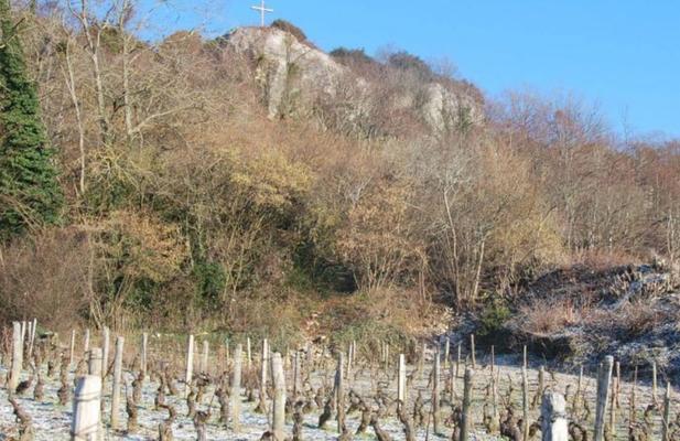 De premier cru wijngaard van Santenay
