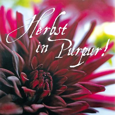 Herbstaussendung - Karten 21x21 cm