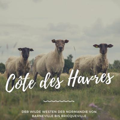 Côte des Havres