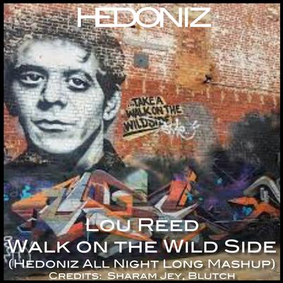 Walk On The Wild Side (Hedoniz All Night Long Extended Mashup)