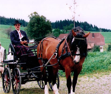 Anette von Moritz bei der LP in St.Märgen wurde von Helmut Faller vorgestellt