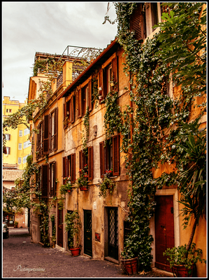 Gasse at Rome